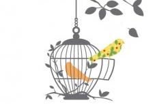 Muurstickers Birds on a tree vogelkooi